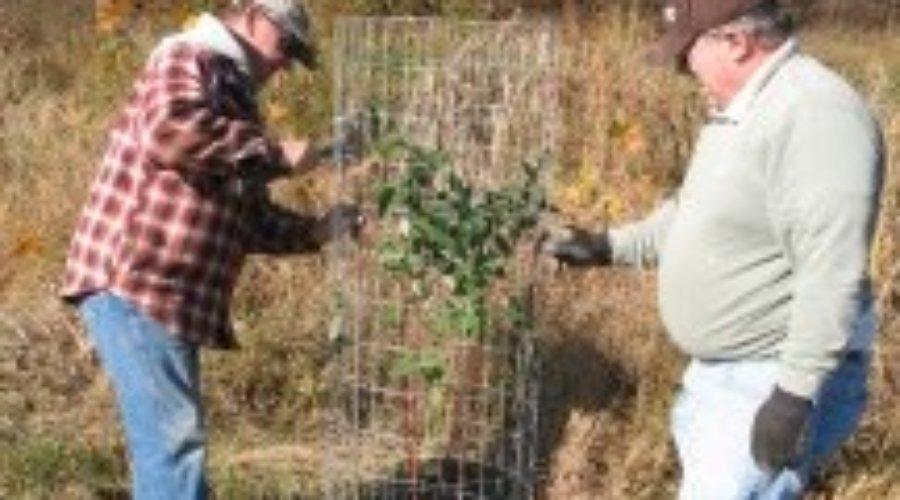 Hess Farm Tree Planting