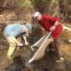 Stream Survey Results for Sleepy Creek at Creek Rd. 8-29-15