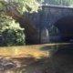 Stream Survey results for Sleepy creek at Burnt Mill Bridge 7-31-15