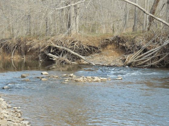 Edminsten streambank erosion before project completion